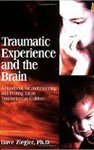 Traumatic Experience and The brain book
